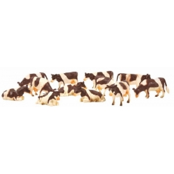 Cows 12pcs Brown/White Laying